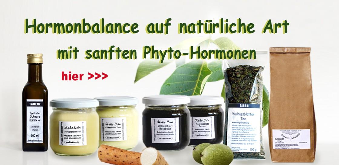 Phytohormone helfen meistens besser, besonders wenn sie kombiniert werden
